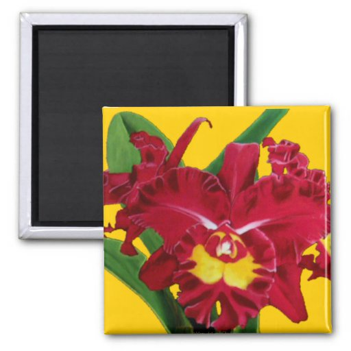 Orchid Oil on Canvas Magnets