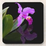 Orchid on Black Coaster Set Coaster