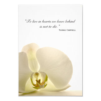 Orchid on White Thank You for Your Sympathy Card