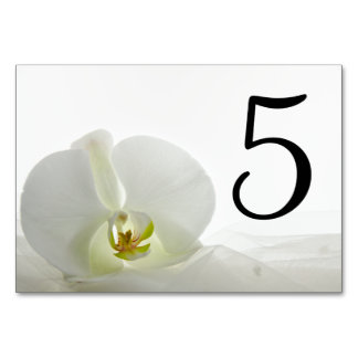 Orchid on White Wedding Table Numbers Table Card