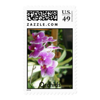 orchid Orchids flower postage stamps