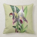 ORCHID (Paphiopedilum Argus) Pillows