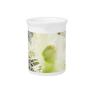 orchid Perfection and Beauty Drink Pitcher