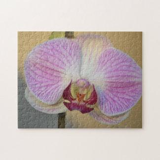 Orchid Petal Puzzle