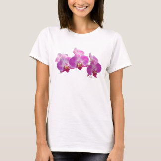 Orchid Phalae Shirts