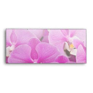 Orchid -  Phalaenopsis - Tickled pink Envelopes