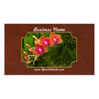 Orchid - Phalaenopsis - Tying Shin Cupid Business Card