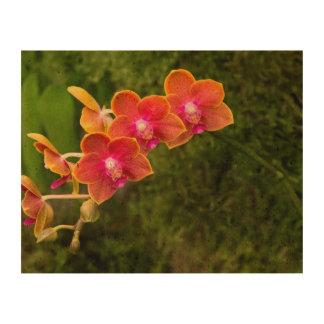 Orchid - Phalaenopsis - Tying Shin Cupid Cork Fabric