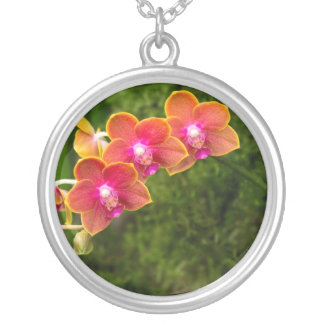 Orchid - Phalaenopsis - Tying Shin Cupid Custom Jewelry