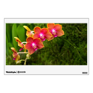 Orchid - Phalaenopsis - Tying Shin Cupid Wall Decals