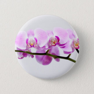 orchid pinback button