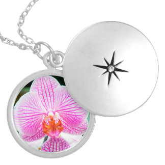Orchid Pink Asian Flower Floral Silver Plated Necklace
