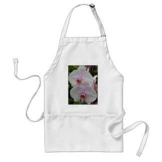Orchid - Pink Blossom (Colossians 2:3) Adult Apron