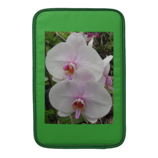 Orchid - Pink Blossom (Colossians 2:3) MacBook Sleeves