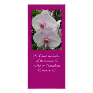 Orchid - Pink Blossom (Colossians 2:3) Rack Cards