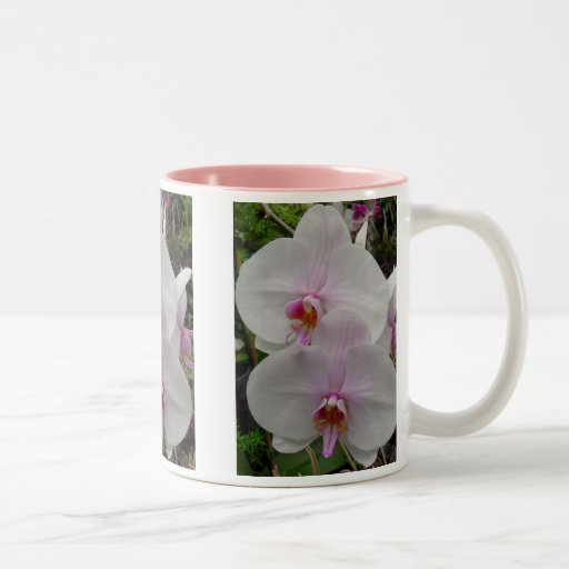 Orchid - Pink Blossom (Colossians 2:3) Two-Tone Coffee Mug
