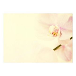Orchid  - Pink High Key Flower - Floral Template Large Business Cards (Pack Of 100)