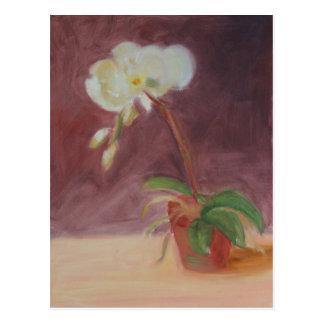 """Orchid"" Postcard"