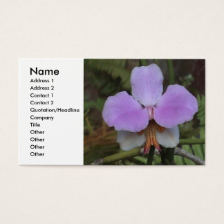 Orchid Profile Card