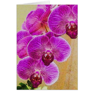 Orchid Promises NoteCards to Personalize Card