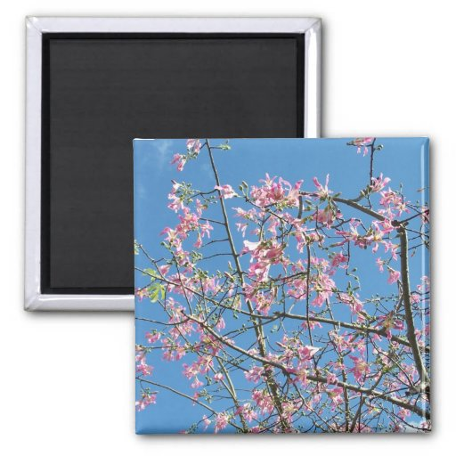 Orchid purple tree against bright blue sky 2 inch square magnet