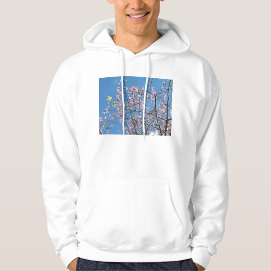 Orchid purple tree against bright blue sky hoodie