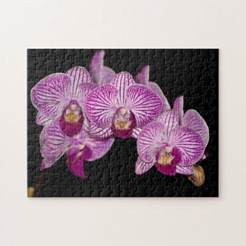 Orchid Puzzle puzzle