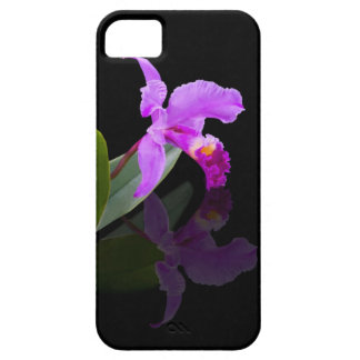 Orchid Reflected on Black iPhone 5 Cases