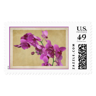 Orchid Romance Postage