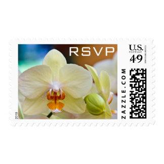 Orchid • RSVP Stamp