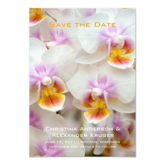 Orchid • Save the Date Announcement
