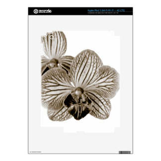 Orchid Skins For iPad 3