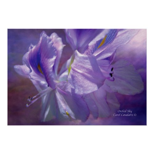 Orchid Sky Art Poster print