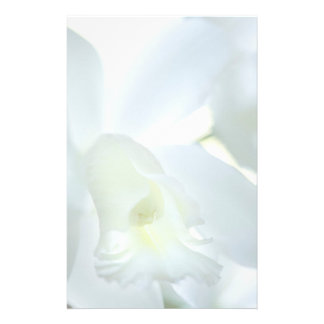 Orchid Stationary Stationery