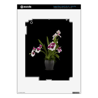 Orchid Tablet Skin Skins For iPad 3