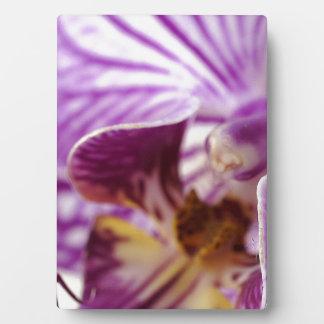 Orchid Trail Plaque