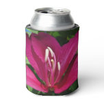 Orchid Tree Blossom Can Cooler