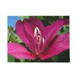 Orchid Tree Blossom Doormat