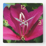 Orchid Tree Blossom Square Wall Clock