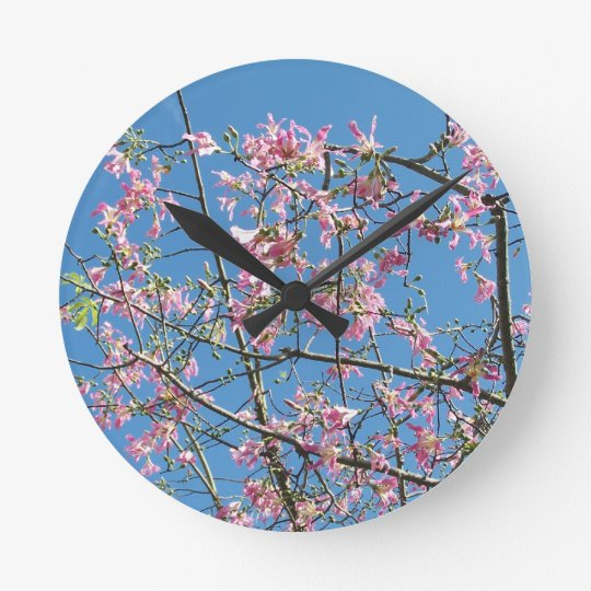 Orchid tree with blue sky round clock