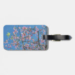 Orchid tree with blue sky tag for bags