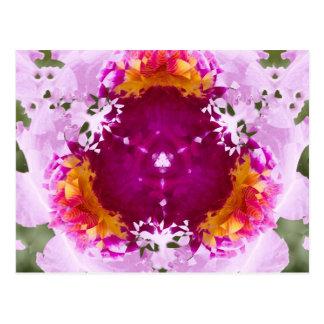 Orchid Triangle Nov 2012 Postcard