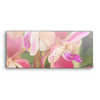 Orchid - Tropical delight Envelope