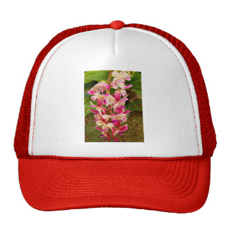 Orchid - Tropical delight Hats