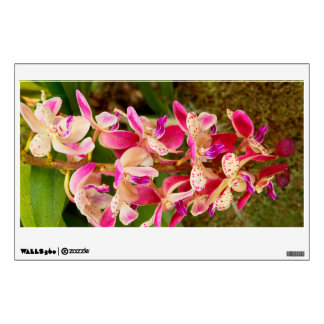 Orchid - Tropical delight Wall Decals