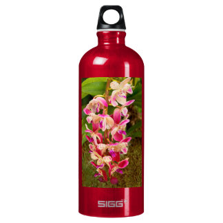 Orchid - Tropical delight Water Bottle