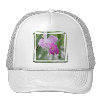 Orchid Types Baseball Hat