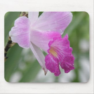 Orchid Types Mouse Pad mousepad