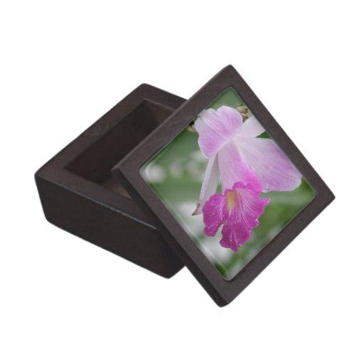 Orchid Types Premium Gift Box