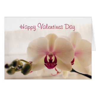Orchid Valentine's Day Greeting Card